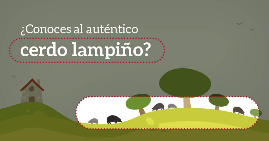 ¿Conoces al auténtico cerdo lampiño 100% ibérico?